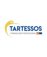 Centro de Estudios Internacionales Tartessos  ⭐