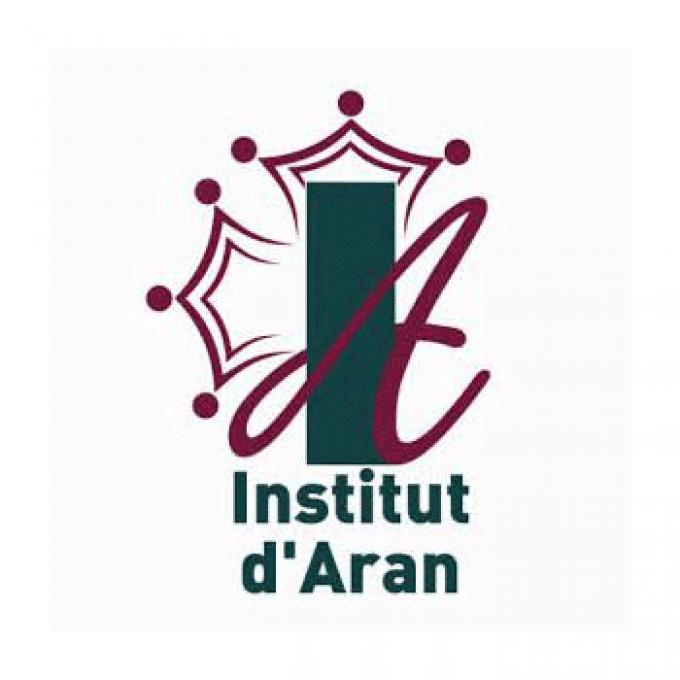 Institut d'Aran